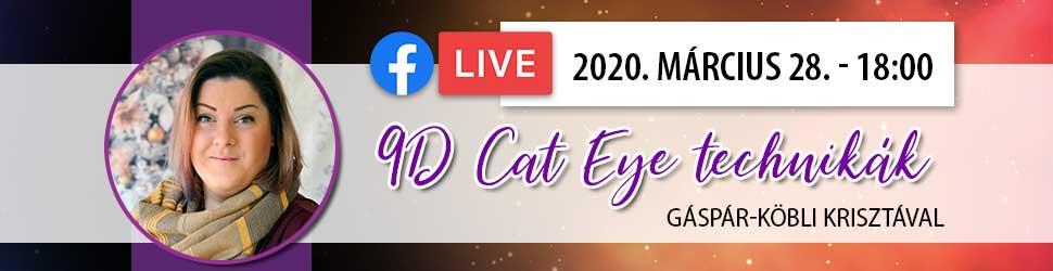 Online körmös tanfolyam Gáspár-Köbli Krisztával - 9D Cat Eye technikák