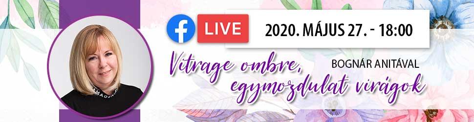 Ingyenes körmös online oktatás Bognár Anitával