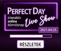 PERFECT DAY LIVE SHOW